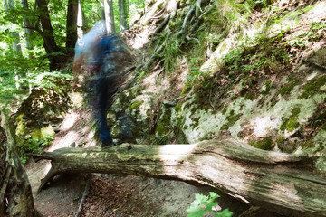 Man walking on a log above the gap in forest. Motion blurred man with long exposure shot