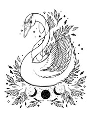Sketch graphic illustration Beautiful Swan fairytale character with mystic and occult hand drawn symbols. Vector illustration. Vintage Hands with Old Fashion Tattoos.