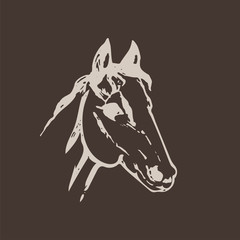 Hand drawn sketch of horse head. Light beige line drawing isolated on brown background. Mustang portrait. Vector animal illustration.