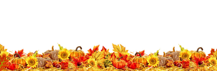 Autumn leaves copy space collection thanksgiving