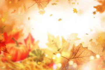 indian summer leaves background