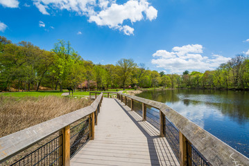 Boardwalk at the Duck Pond at Edgewood Park in New Haven, Connecticut