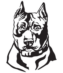 Decorative portrait of Dog American Staffordshire Terrier vector illustration