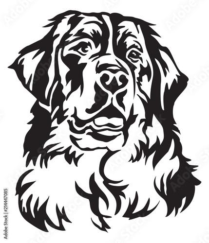 Decorative Portrait Of Bernese Mountain Dog Vector Illustration