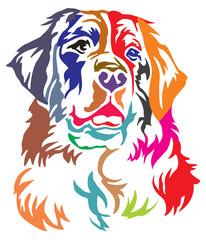 Colorful decorative portrait of  Bernese Mountain Dog vector illustration