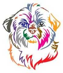 Colorful decorative portrait of Dog Shih Tzu vector illustration