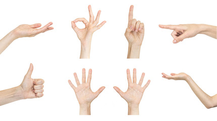 Set of woman's hand gestures isolated on white background.