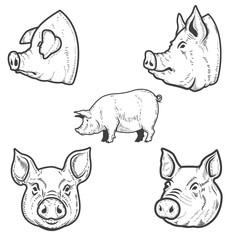 Set of pig illustrations. Pork head. Design element for emblem, sign, poster, badge.