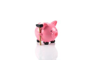 Gorgeous pink piggy bank
