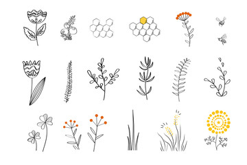 Wall Mural - Doodle plants set for honey bees