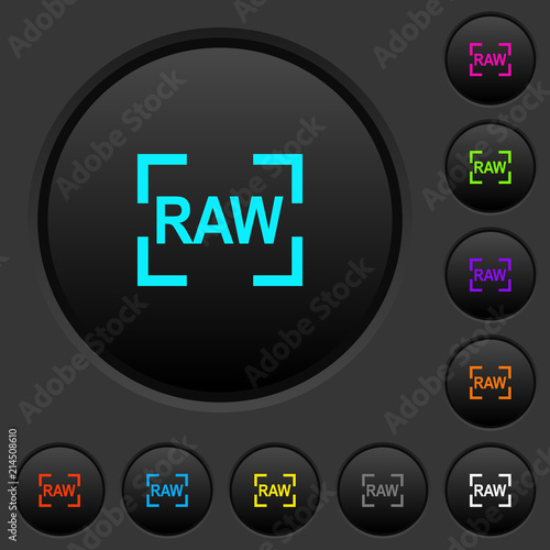 Camera raw image mode dark push buttons with color icons