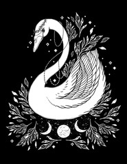 Sketch graphic illustration Beautiful Swan sun fairytale character with mystic and occult hand drawn symbols. Vector illustration. Vintage Hands with Old Fashion Tattoos,print t shirt..