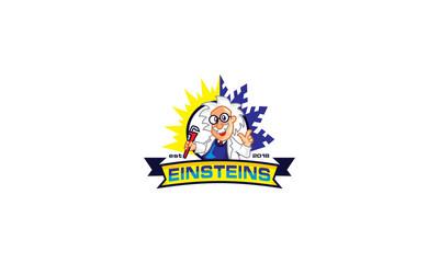 einstein science logo icon vector