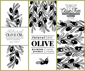 Olive tree banner set. Vector hand drawn vintage illustration. Design for olive oil, olive packaging, natural cosmetics, health care products. Retro style image.