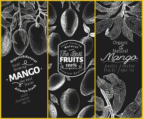 Mango fruit banner set. Hand drawn vector fruit illustration on chalk board. Engraved style vintage exotic background.