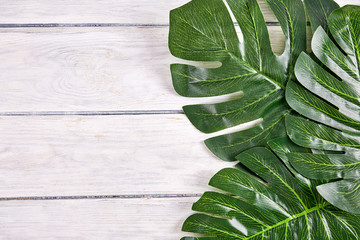 Green palm leaves close up on wood desk
