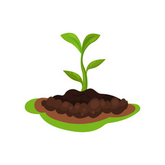 Flat vector icon of young green plant with small leaves sprouting from the ground. Gardening and cultivation theme