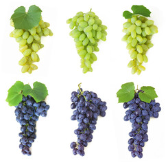 grapes set isolated on white background
