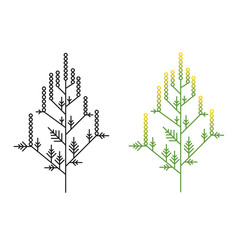 Ragweed minimalistic line art painted in two styles