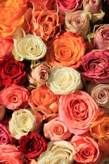 Mixed pink and orange bridal bouquet