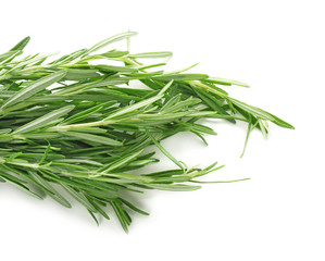 Bunch of fresh rosemary on white background, closeup