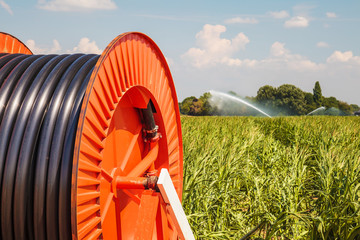 Irrigation sprinkler on farmland