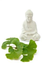 Buddha with ginkgo