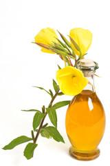 oil of evening primroses
