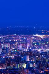 札幌夜景 幌見峠からの眺め