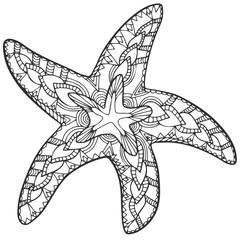 Zentangle starfish summer doodle sketch black white