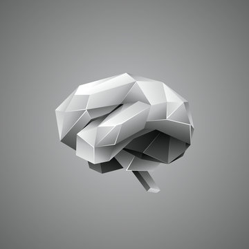 Low poly human brain on a gray background. Abstract anatomy organ. Brain in vector 3D polygon style.