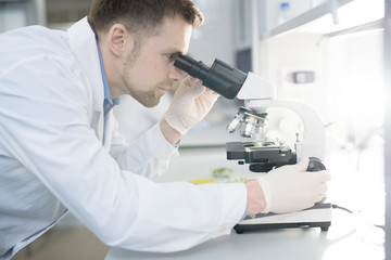 Side view portrait of scientist looking in microscope while doing research in medical laboratory