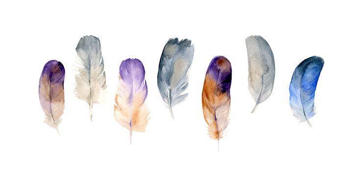 Set of colorful watercolor feathers on white background in vector format. Hand drawn tribal feathers illustration.