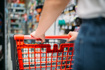 Female customer with cart in food store, back view