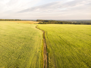 Flight in the countryside over the road and fields in the summer. Aerial photography. 4K