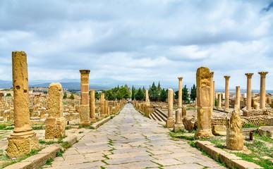 Foto op Aluminium Algerije Timgad, ruins of a Roman-Berber city in Algeria.