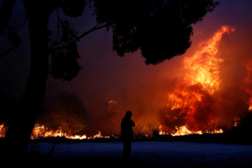 A man looks at the flames as a wildfire burns in the town of Rafina