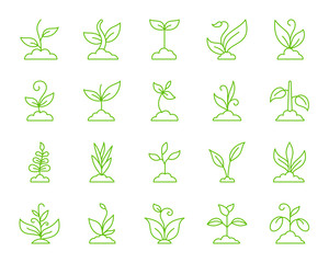 Grass simple color line icons vector set