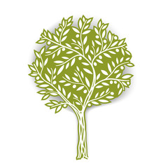 Olive tree. Vector illustration. It can be use for packaging, label, icon and etc. EPS10.