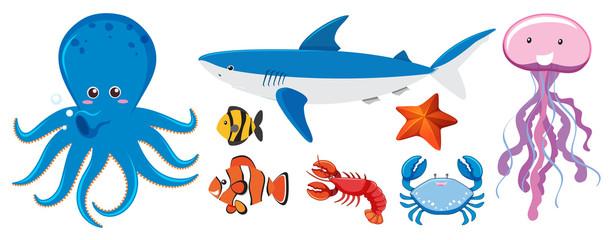 A Set of Sea Creatures