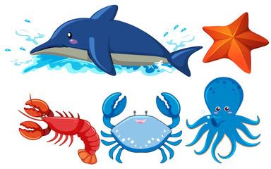 Set of aquatic animals
