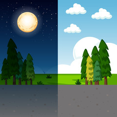 Day and night nature scene