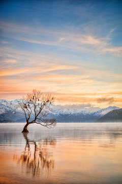 Lake Wanaka Otago New Zealand