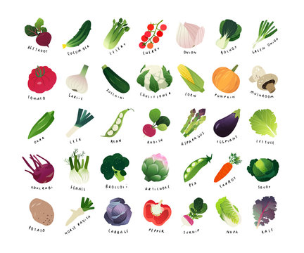 List of common vegetables, clip art miniatures of common vegetables