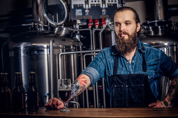 Portrait of a bearded tattooed hipster male in a jeans shirt and apron working in a brewery factory, standing behind a counter.