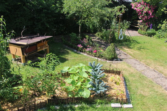 Permakultur Hausgarten
