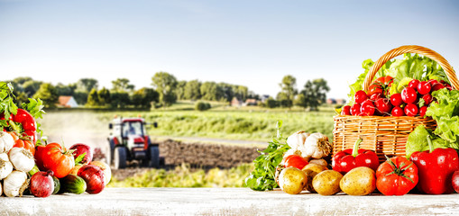 vegetables and rural landscape