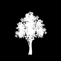 White silhouette of foliate tree icon isolated on black background.