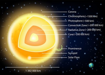 Sun structure diagram vector illustration