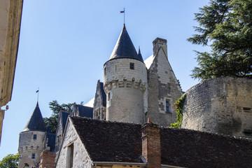 Montrésor. Le château vu du centre-ville. Indre-et-Loire. Pays de Loire